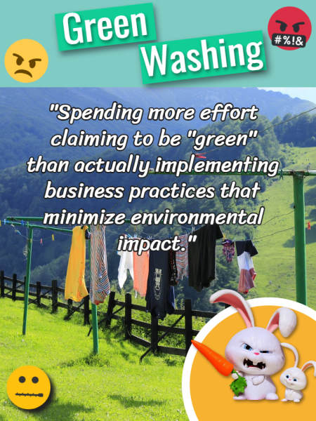 "Image text defines ""Greenwashing""."